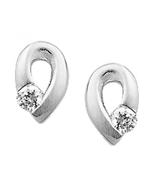 Zilveren Oorbellen - 1320067